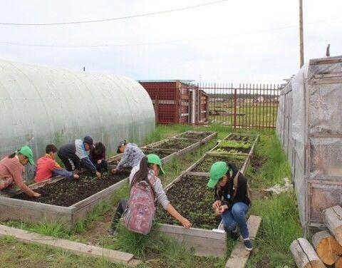 Агронаправление лагерей труда для детей в Якутии назвали одним из самых созидательных