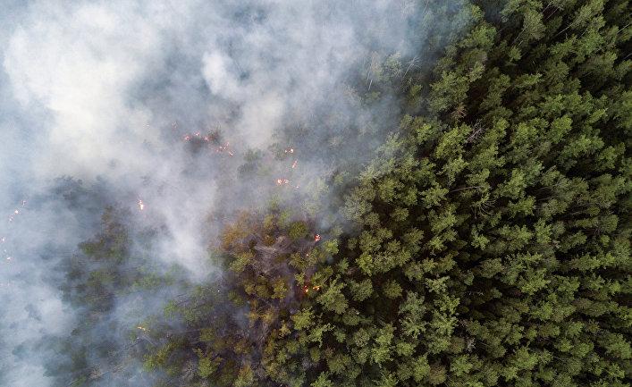 В Якутии действуют более ста лесных пожаров