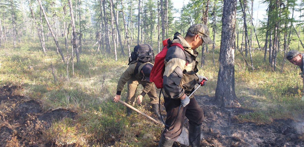 Глава Момского района Иван Павлов рассказал об обстановке с лесными пожарами