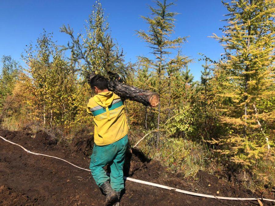 В Якутии ликвидируют семь лесных пожаров