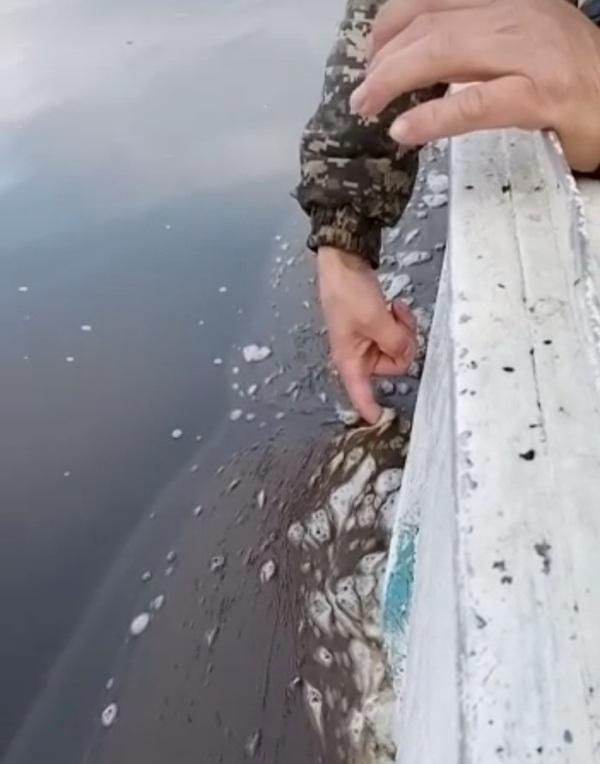 Экологи проверят состояние реки Яна после обращения жителей села Казачье