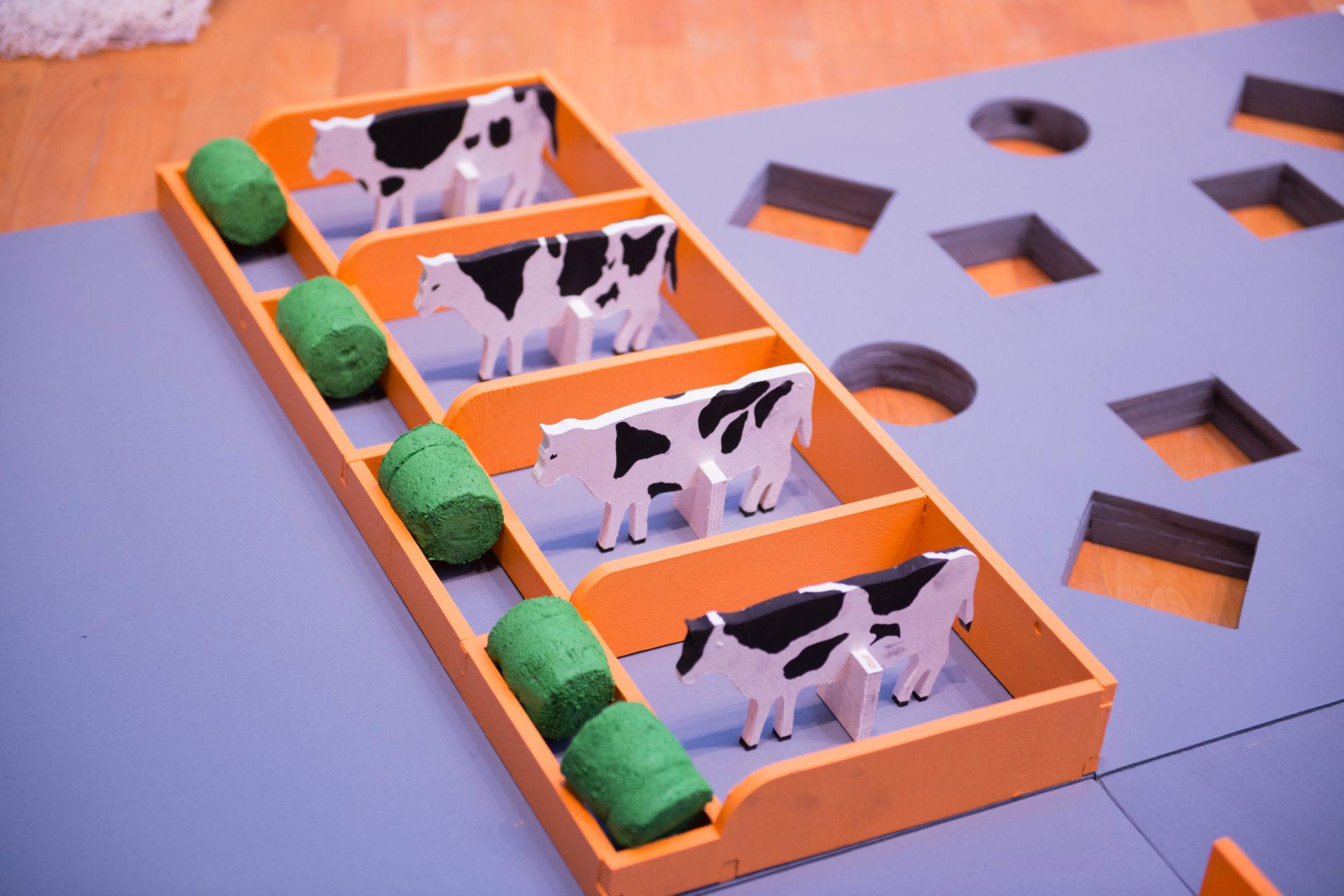 Роботы, коптеры в сельском хозяйстве: впервые в Якутии проходит конкурс «АгроНТИ»