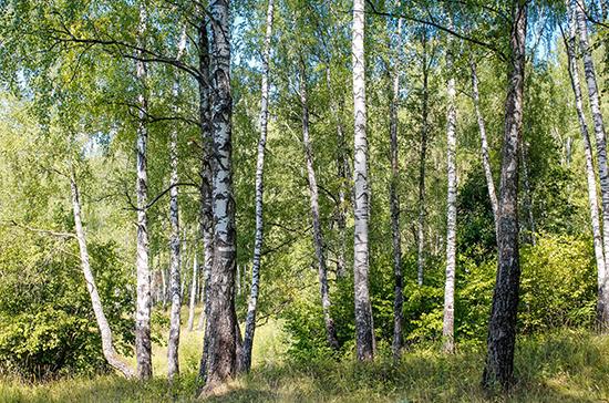 В Госдуме хотят запретить лишать охраны природные памятники без экспертизы