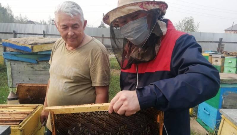 Местное производство в Якутске: северный мед