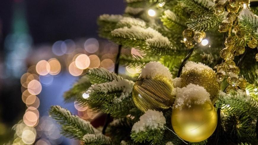 В Госдуму внесут законопроект о переносе выходного с 8 января на 31 декабря