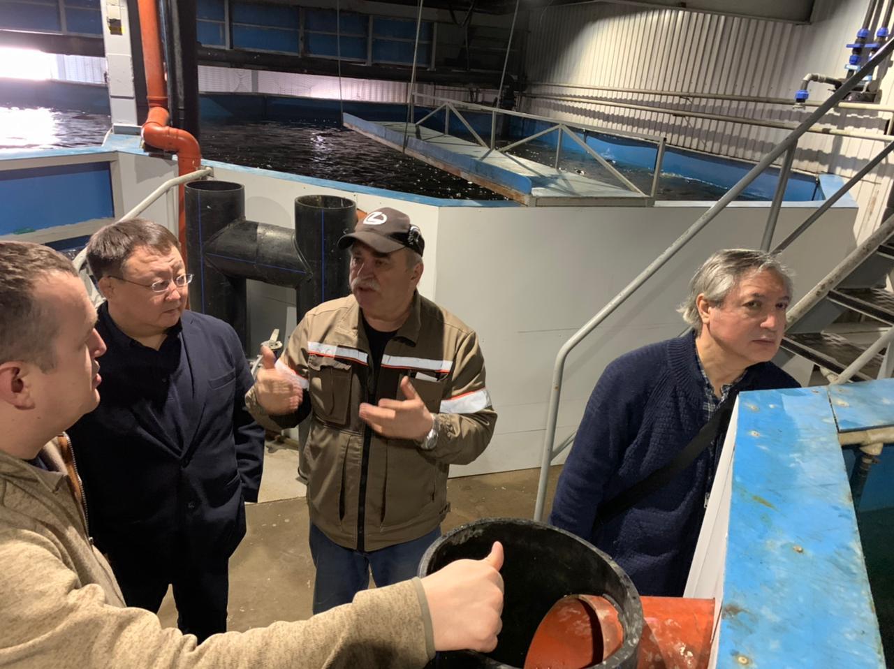 ЖДЯ: Опыт красноярских рыбоводов будет применен для восполнения рыбных запасов реки Алдан.