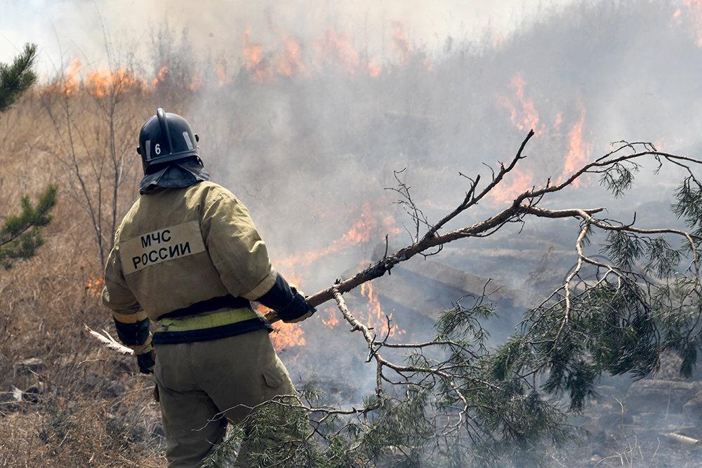 Правительство выделит 10 млрд рублей на оснащение лесных пожарных