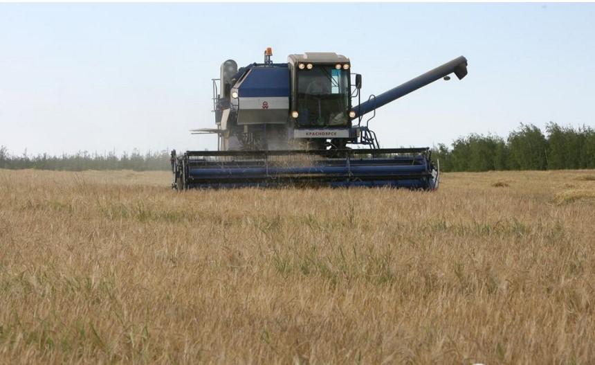 Площадь засеянных сельскохозяйственных культур в Якутии в 2021 году расширится на 2 тыс гектар
