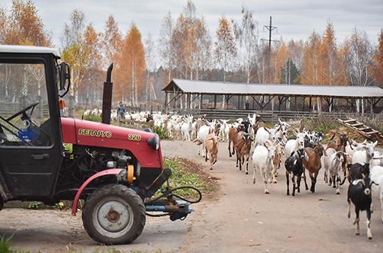 Фермерам разрешили продлить кредиты