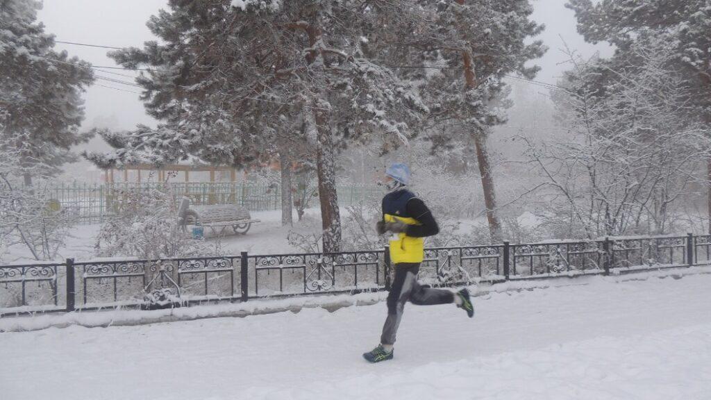 Дорожки для ходьбы оборудуют в парке культуры и отдыха Якутска