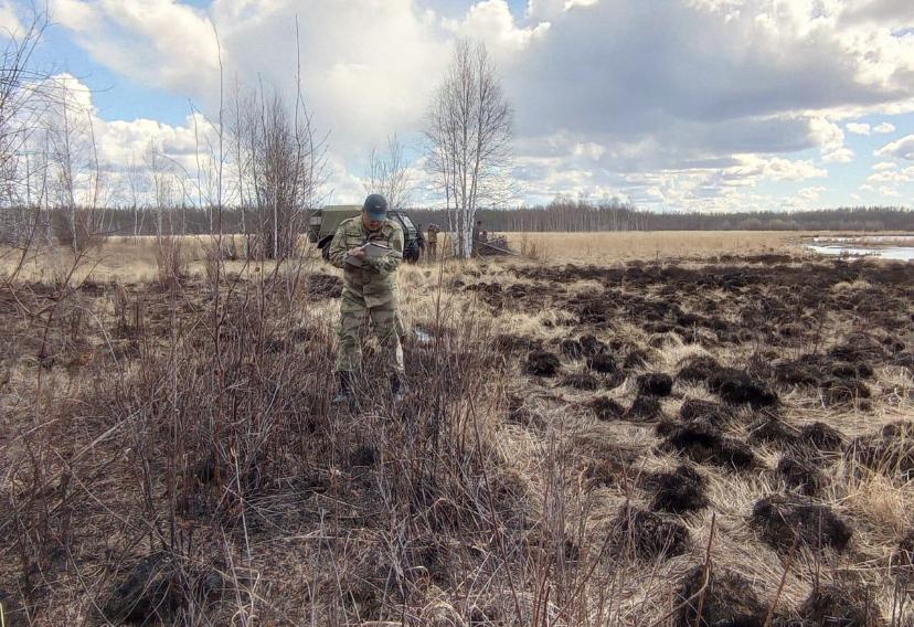 За сутки в Якутии ликвидировано пять природных пожаров