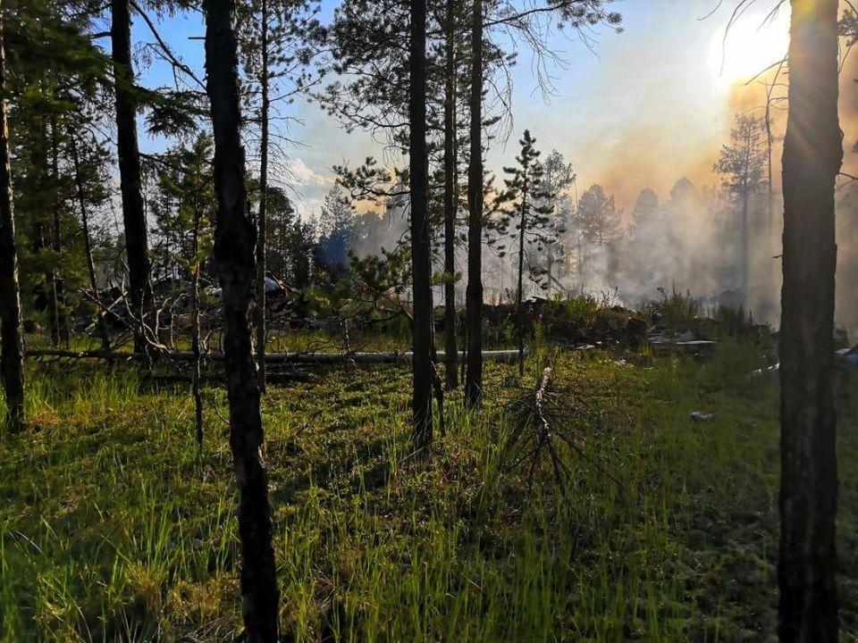 Пожароопасный сезон установлен на землях лесного фонда Якутии