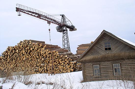 Стоимость древесины в России за год выросла в два раза