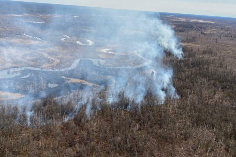 В Якутии принимаются меры по тушению 13 лесных пожаров