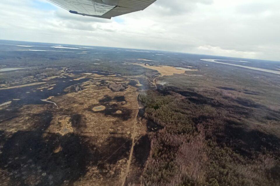 За сутки в Якутии ликвидировали шесть природных пожаров