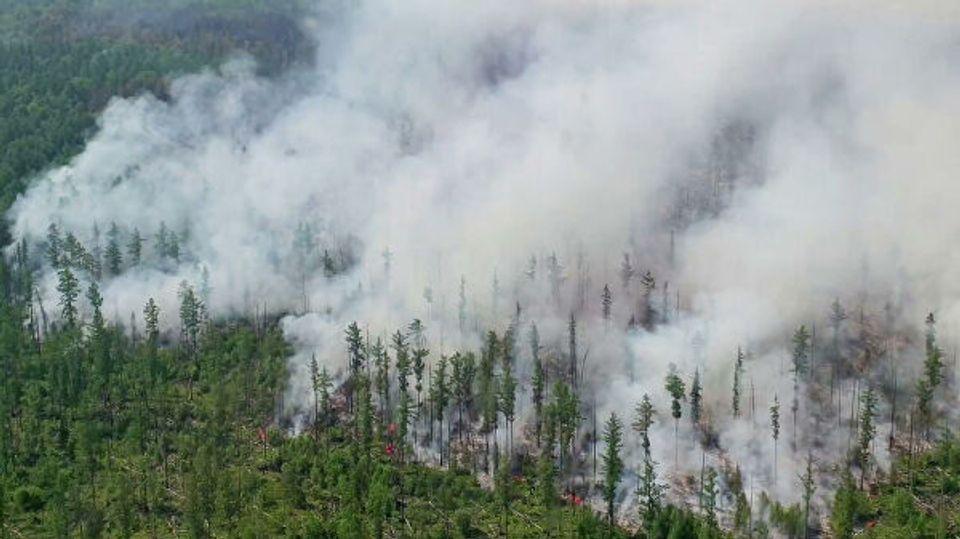 Прокуратура Якутии выявила факты несвоевременного начала тушения лесных пожаров