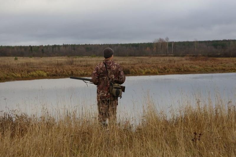 Минприроды РФ получит полномочия по согласованию ограничения охоты в регионах