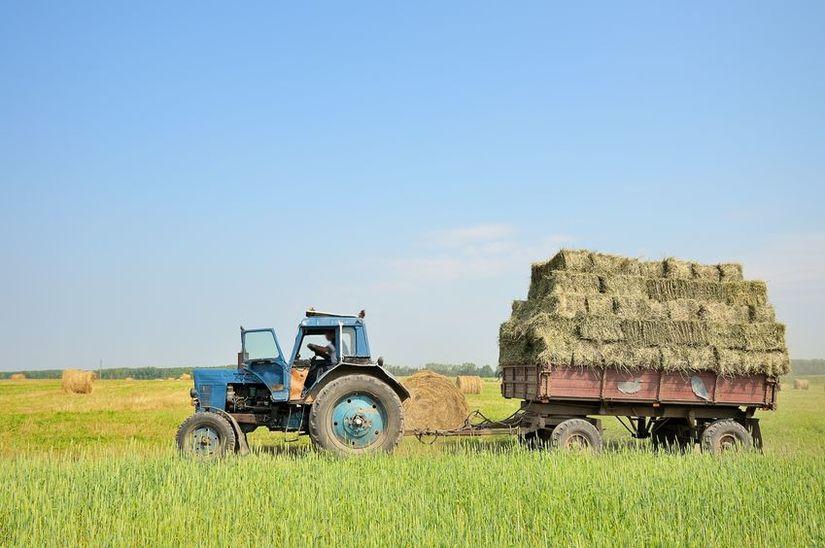 Депутаты рассмотрели ход реализации плана по заготовке сена