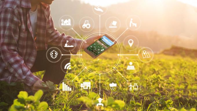 Разберем по составу: Россельхозбанк начнет предоставлять цифровой сервис анализа почвы на макро- и микроэлементы, чтобы повысить урожайность полей
