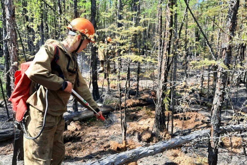 В Якутии за сутки ликвидировали четыре лесных пожара