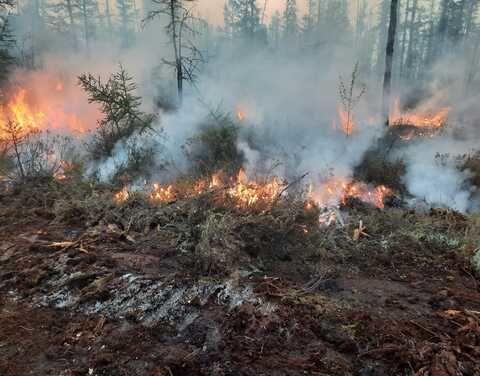 В Сунтарском районе будет объявлен режим ЧС в связи с лесными пожарами