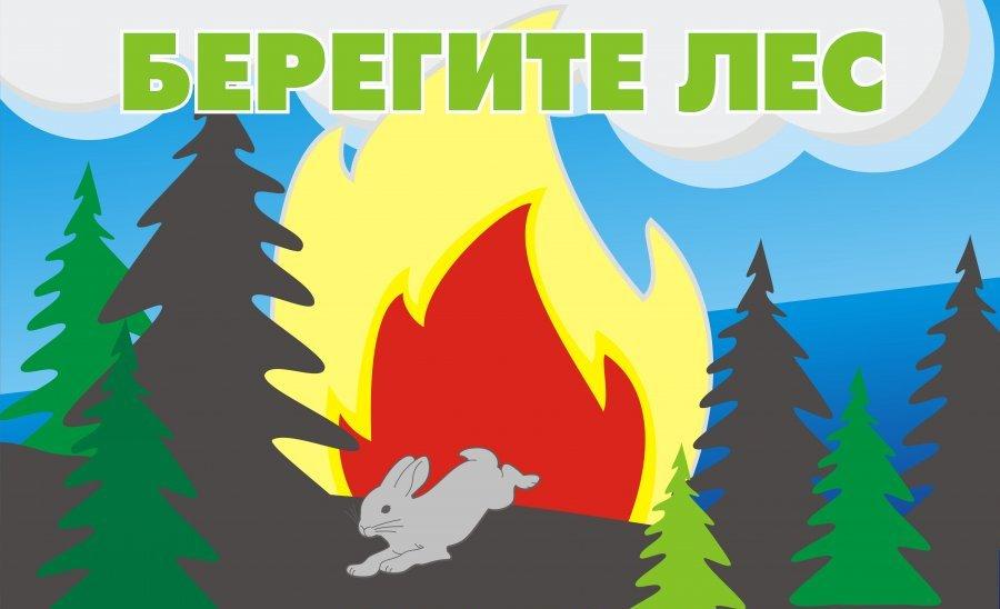 При пребывании в лесах соблюдайте требования пожарной безопасности