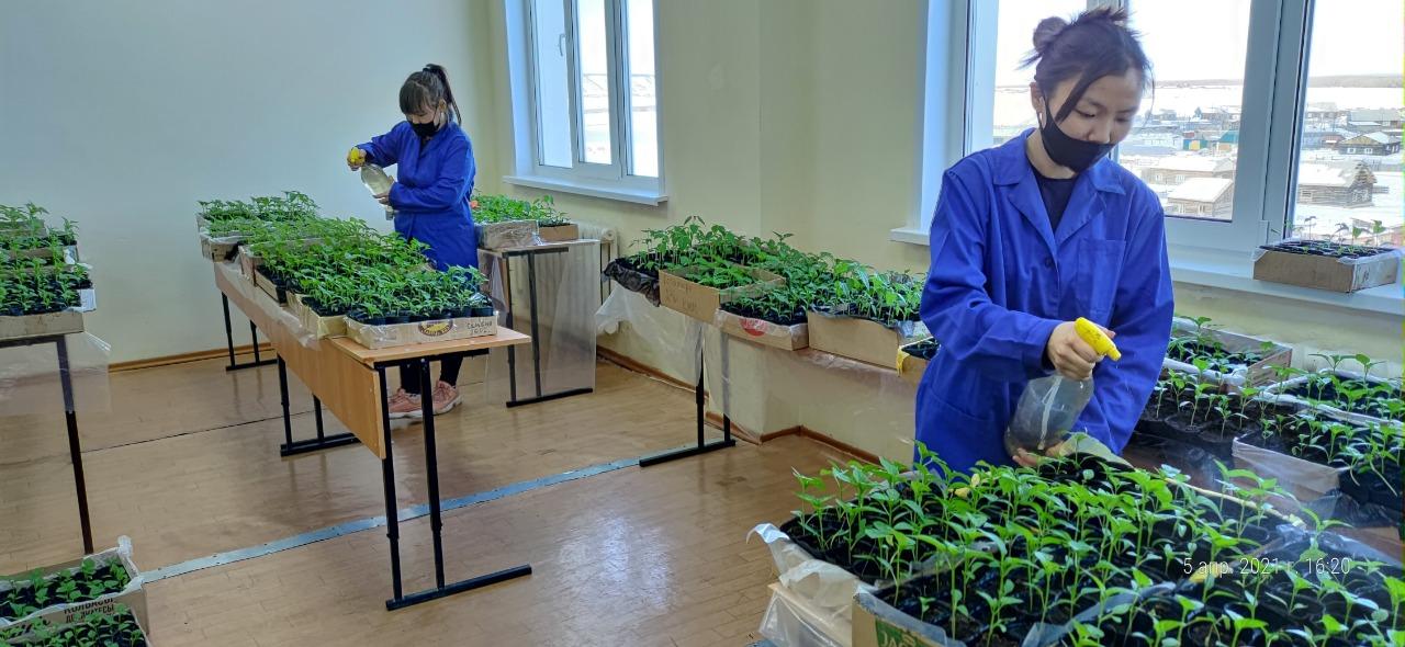 «Агростарт» стал победителем гранта ректора АГАТУ