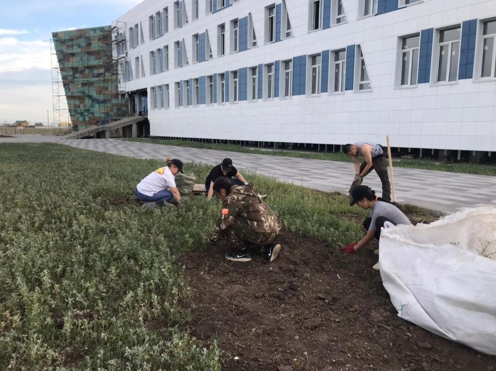 Ландшафтный дизайн Малой академии наук Якутии студентами АГАТУ
