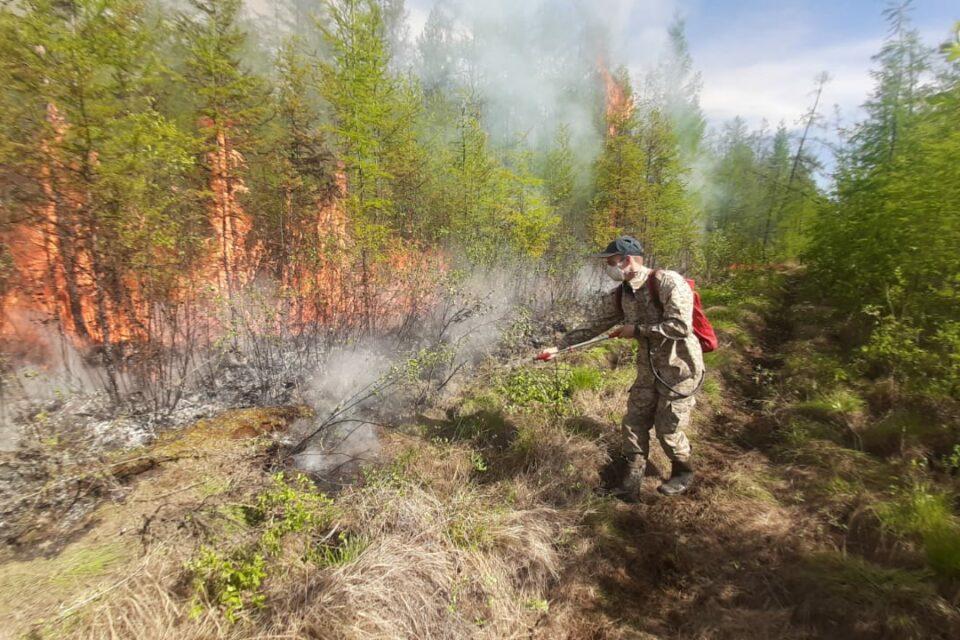 В Нюрбинском районе действует 3 лесных пожара