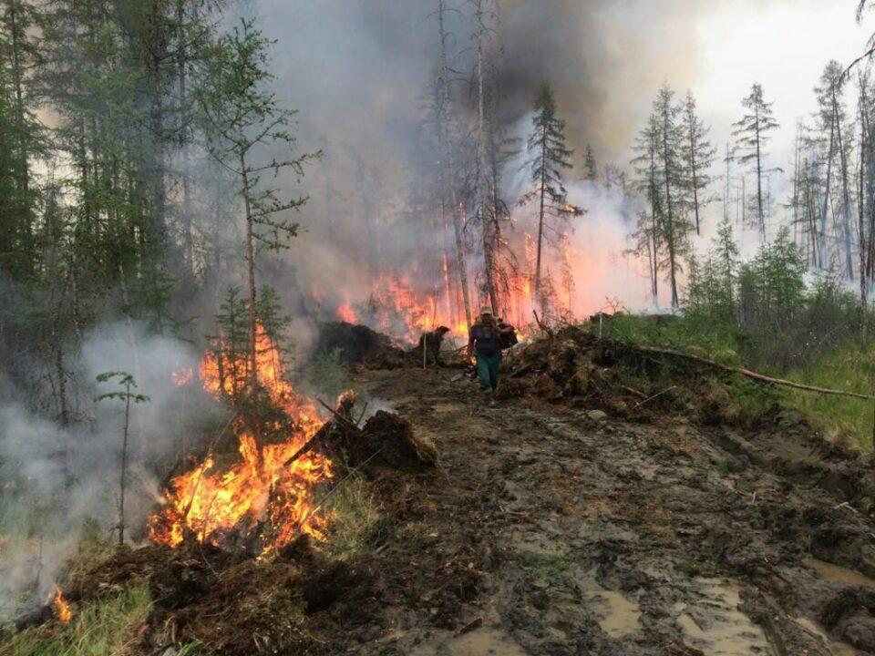 Якутск накрыло дымом от пожаров в Горном улусе