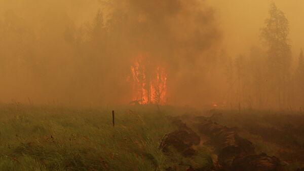 Сергей Шойгу направил на тушение лесных пожаров в Якутии инженерную роту