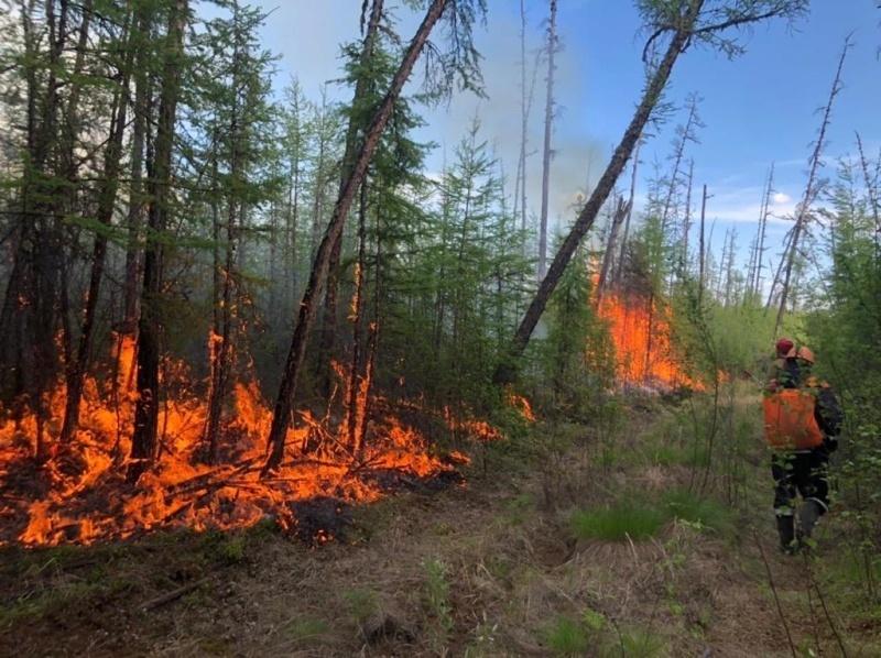 В Якутии в связи с угрозой лесных пожаров к населенным пунктам объявлена эвакуация жителей двух сел