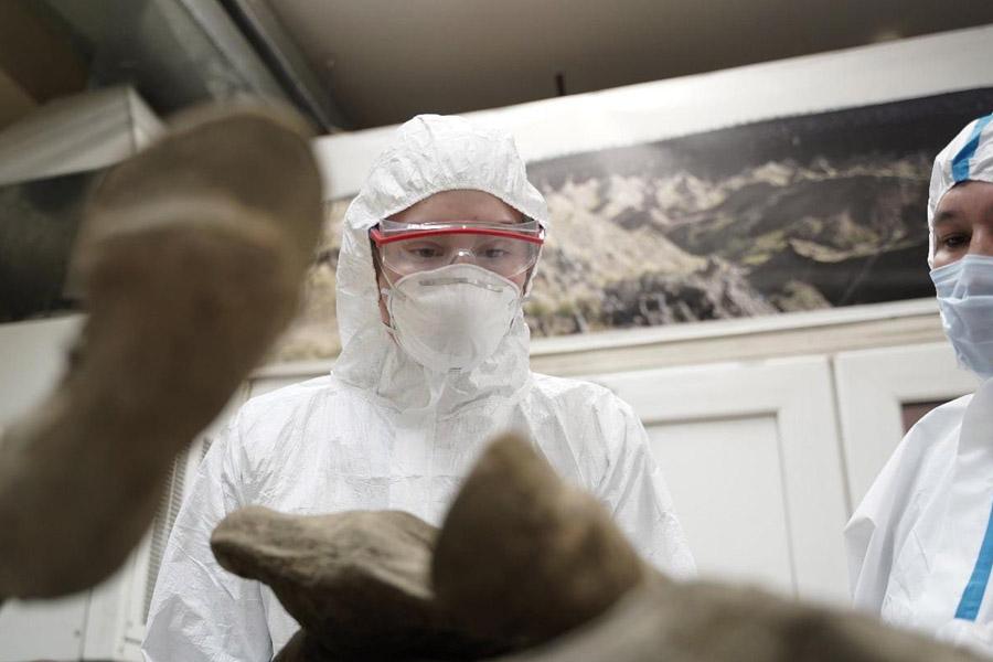Ученые СВФУ и представители «Вектора» предлагают создать инновационное палеогенетическое криохранилище