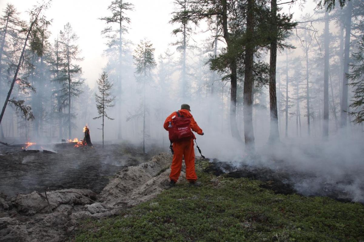 Главой республики введен режим «Чрезвычайная ситуация» в лесах на территории Республики Саха (Якутия)