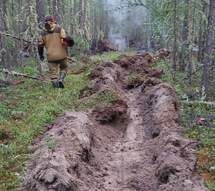 Сергей Сивцев разъясняет, что подразумевается под термином «лесной пожар под контролем»