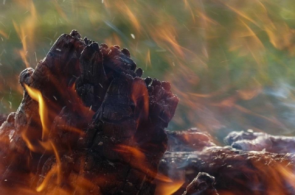 В Якутии создадут новую программу действий защиты лесов от пожаров