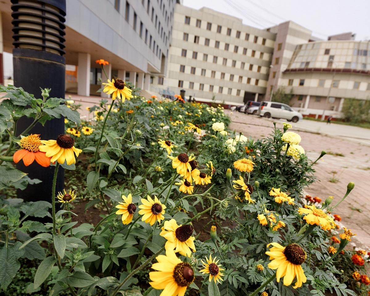 В Якутске подвели итоги конкурса «Миллион цветов»
