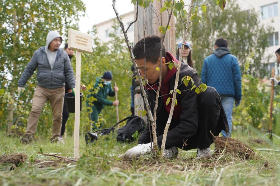 В СВФУ посадили именные деревья памяти жертв Великой Отечественной войны