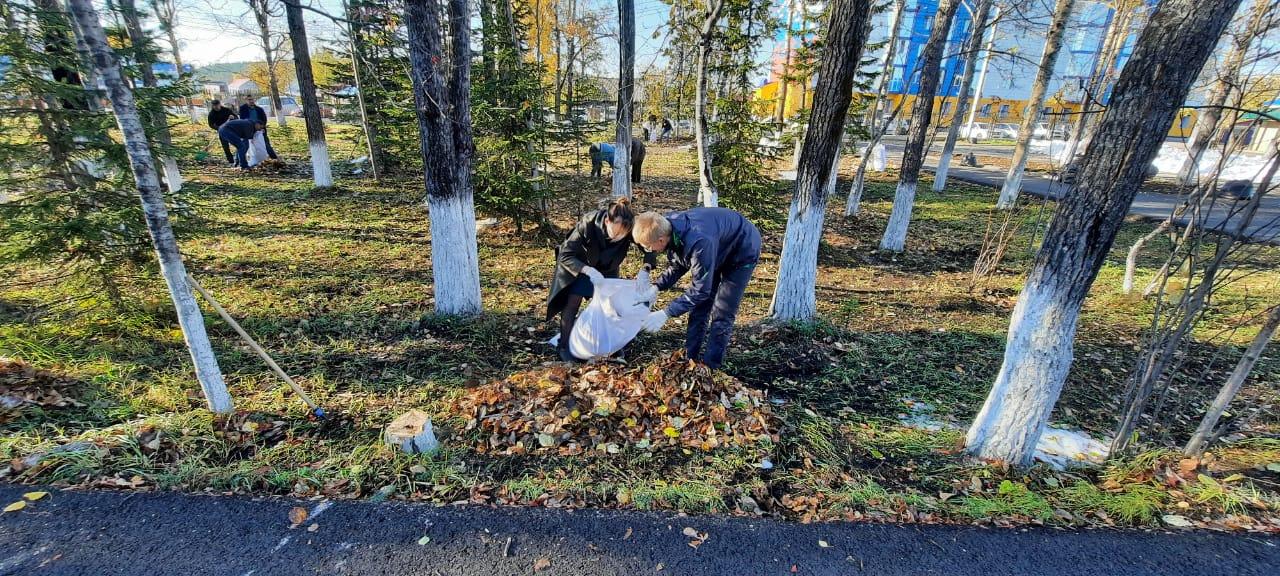 Сотрудники компании ЖДЯ очистили территорию от  мусора и сухих листьев