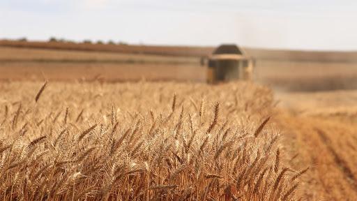 Программу развития сельского хозяйства до 2025 года расширили
