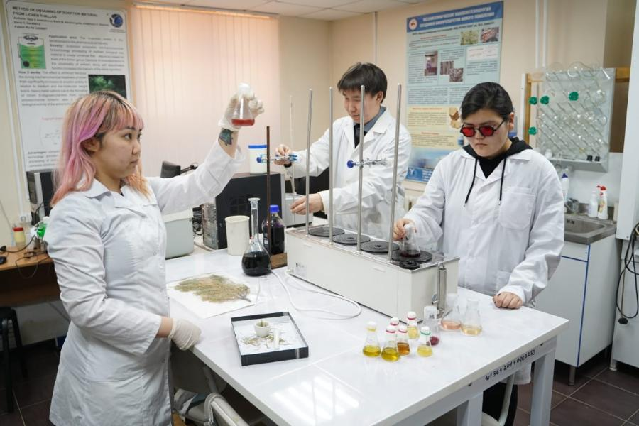 Ученые СВФУ выявили новый высокоэффективный антиоксидант в траве иван-чая