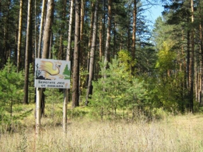 На территории города Якутска установлен особый противопожарный режим