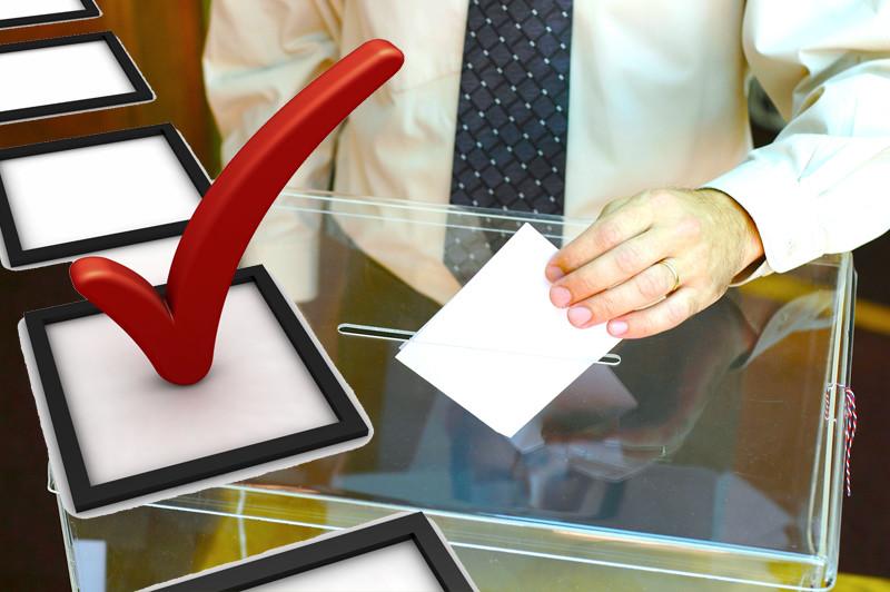 На мэрских выборах самовыдвиженцы не будут участвовать