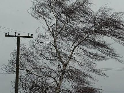 МЧС предупреждает: в ряде районов республики ожидается снег с усилением порывистого ветра
