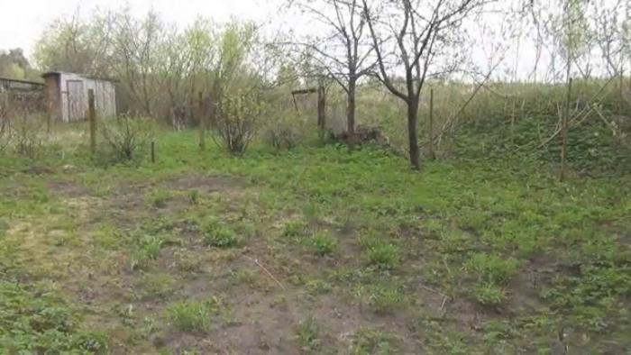 В Якутии землеустроитель подписала договор за умершую женщину