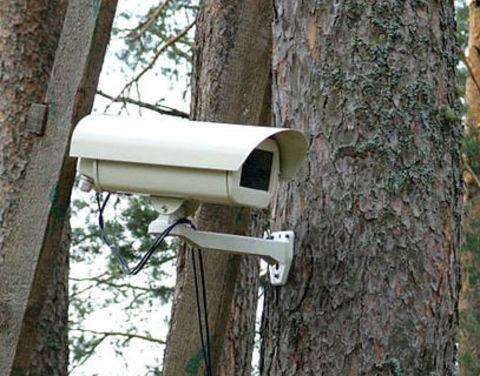 Новые технологии – на защиту от лесных пожаров