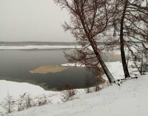 По факту загрязнения реки Вилюй проводится проверка