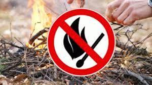 Жителям Якутска напоминают об обязанности соблюдать требования пожарной безопасности в лесах