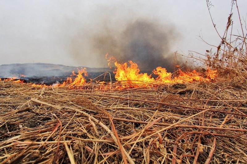 В Якутии ликвидировали два лесных пожара
