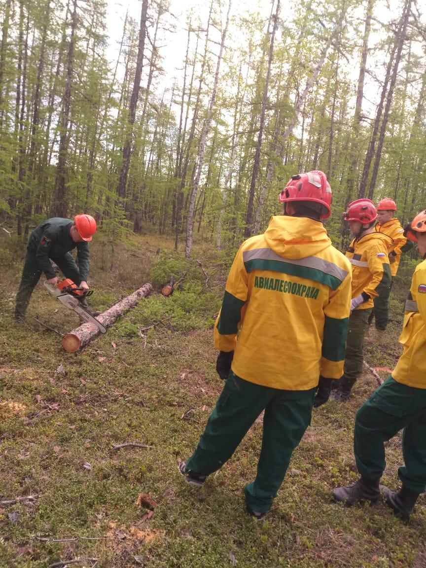В Якутии состоялся первый выпуск «вальщиков леса»